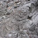 Pahoehoe lava na Rangitotu. Lepo za videt.