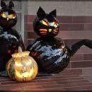 Buče halloweenske