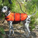 my life jacket
