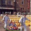 Praznik sira v mestu Alkmaar.