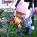 Zdaj je ravno pravi čas za vohanje rožic - april 2007