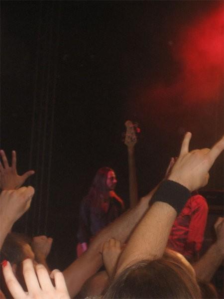 Whitesnake - foto povečava
