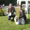 SHIH - TZU, samica, vmesni razred - KALSANG RINCHEN-PAMO - CAC, klubska prvakinja