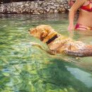 Jos malo kupanja :))