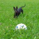 Casper se je odločil, da postane nogometaš