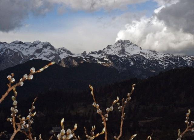 Velika planina - foto