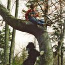 Res ne vem, zakaj mi ne dovolijo na drevo! Menda takrat agiliti še ni bil tako popularen.