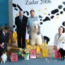CACIB ZADAR, 29.04.2006 BOG 3.