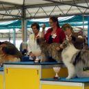 BOG I. FCI, 27.04.2006,  zagovalec: pirenejski ovčar