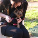 Moja mila Honki sa Elly - Moje milá Honki s její Elly