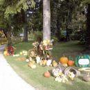 Mozirski gaj  september2007